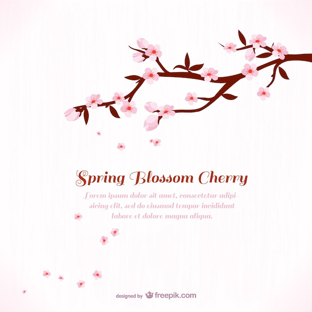 Background template with cherry blossom Vector | Free Download