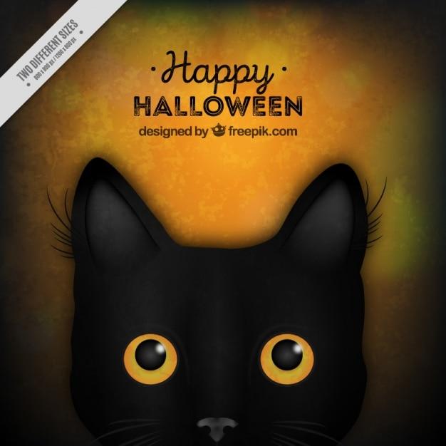 ハロウィン黒猫と背景 無料ベクター