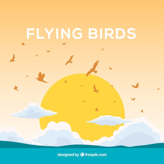 Background with birds and sun Free Vector