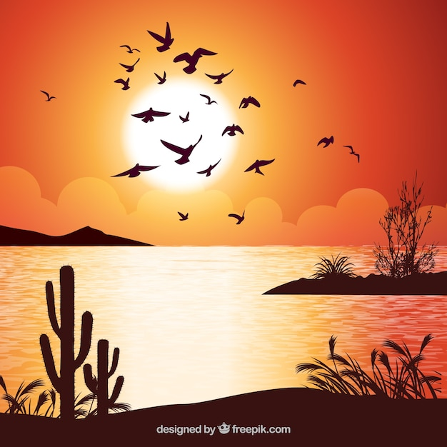 Background with birds at sunset Free Vector