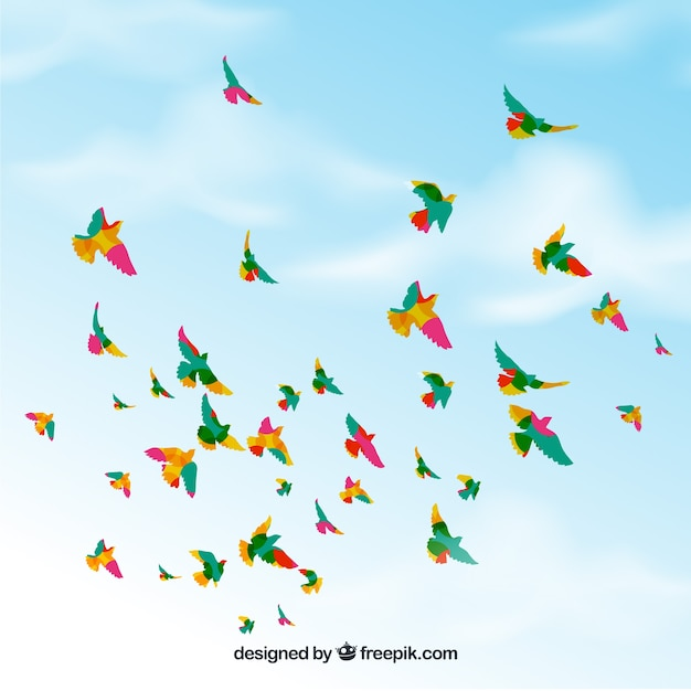 Background with birds flying in sky