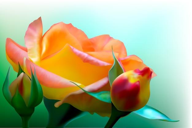 黄色いバラが咲く背景 Premiumベクター