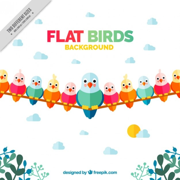 Background with colorful nice birds in flat\ design