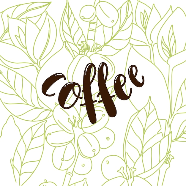 Background with floral design with coffee text. coffee beans and leaves. white background. Premium Vector