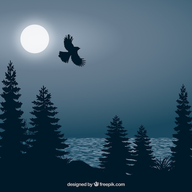 Background with flying bird at night