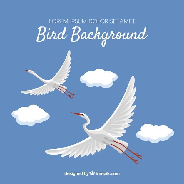 Background with flying storks Free Vector
