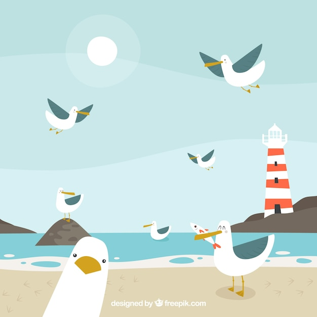 Background with funny seagulls Free Vector