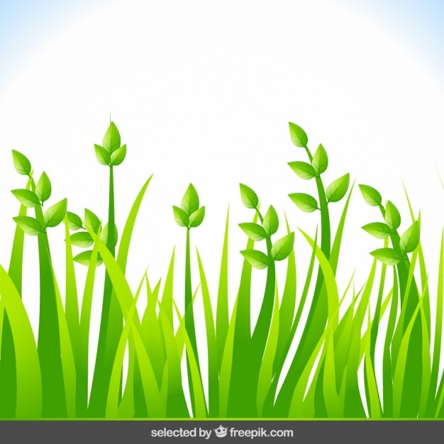 Background with green grass Vector | Free Download
