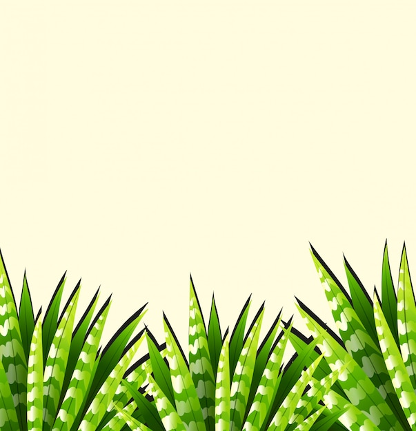 Background  with green leaves Free Vector