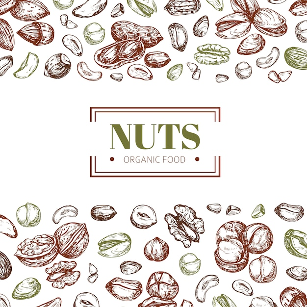Background with nuts. cashew and walnut, pistachio and hazelnut organic food vector poster template Premium Vector