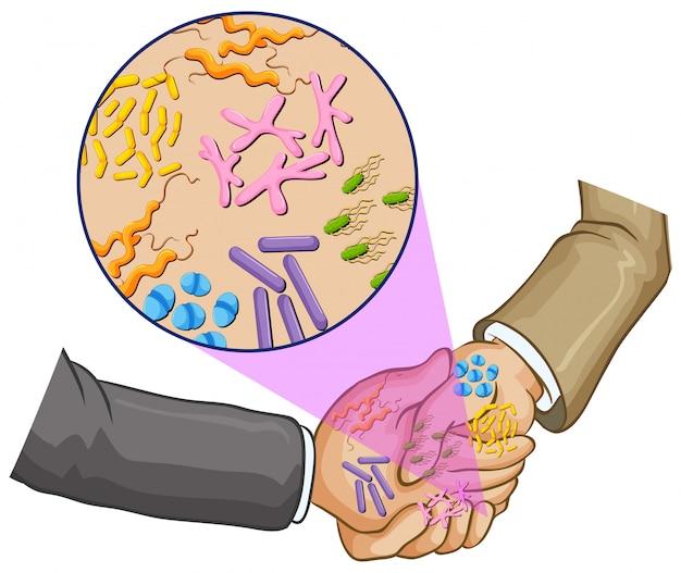 Bacteria when shaking hands Free Vector