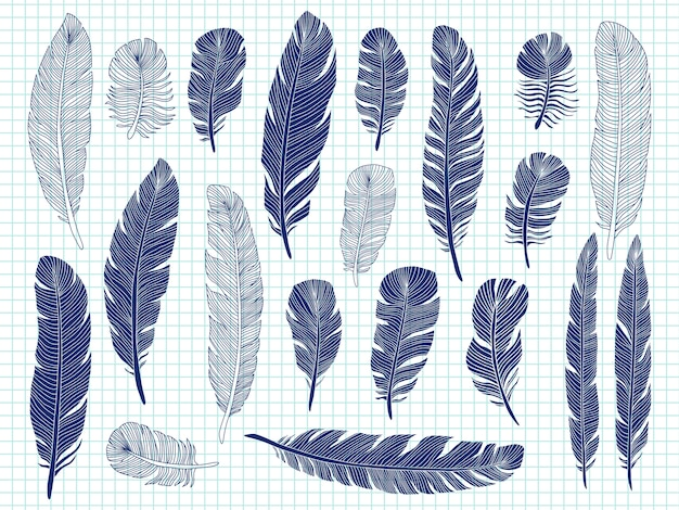 Ballpoint pen drawing bird feathers big set on notebook Premium Vector