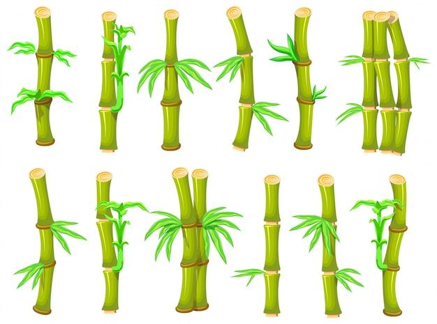 대나무 만화 아이콘을 설정합니다. 그림 흰색 배경에 나무입니다. 만화 아이콘 대나무를 설정합니다. 프리미엄 벡터