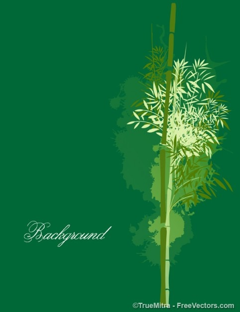 Bamboo on green background Free Vector