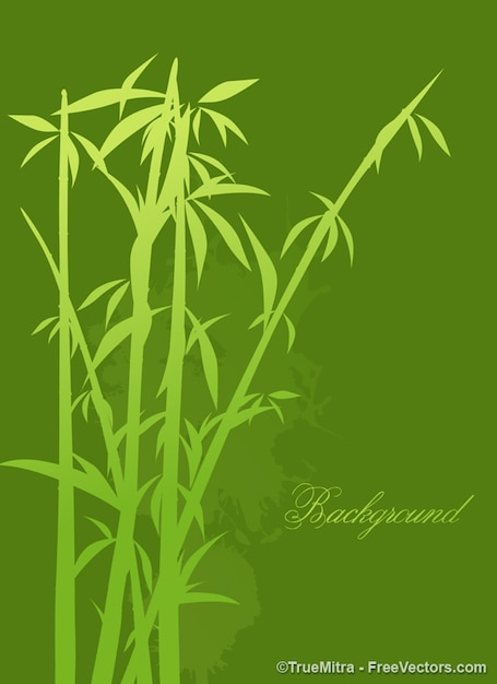 Bamboo tree background vector set
