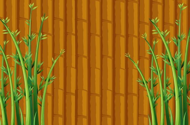 Bamboo Free Vector