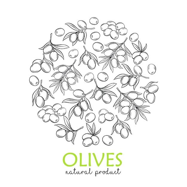 ファーマーズマーケットのためのモダンな彫刻オリーブと木の枝のバナーテンプレート Premiumベクター
