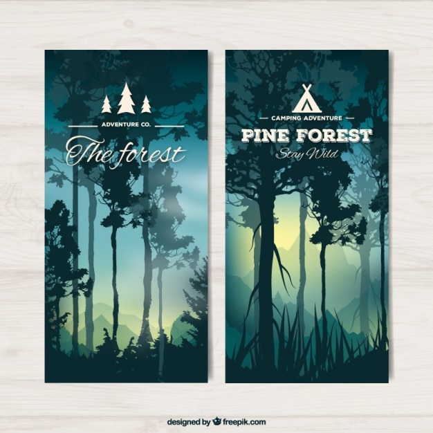 Banners of beautiful forest with high trees at\ sunset
