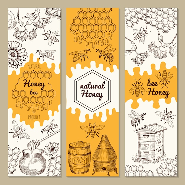 Banners with honey product pictures. bee, honeycomb. vector illustrations. sweet honey natural banner collection Premium Vector