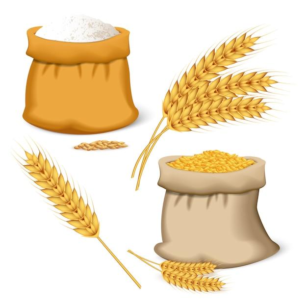 Barley wheat icon set Premium Vector