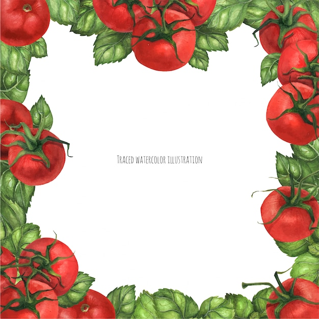Basil and tomatoes square frame Premium Vector