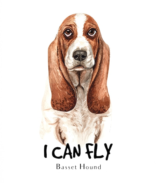 Basset hound dog watercolor for printing. Premium Vector