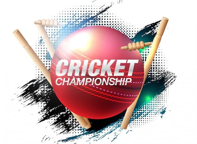 Batsman and bowler playing cricket championship sports Premium Vector