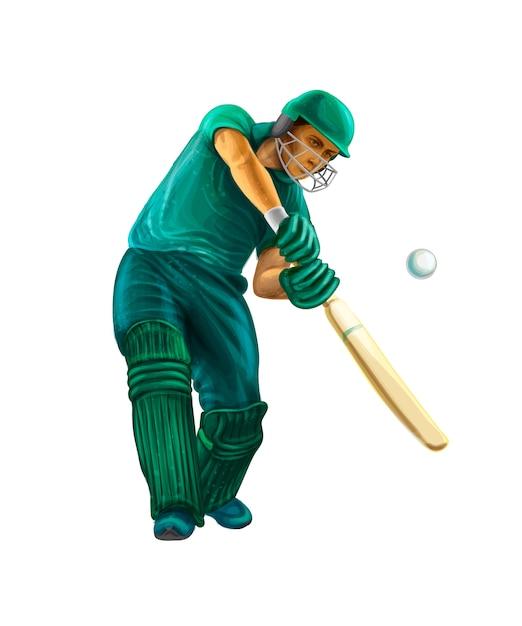Batsman playing cricket. vector realistic illustration of paints Premium Vector
