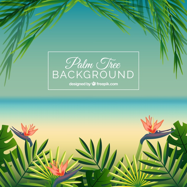 Beach background with palm leaves and\ flowers