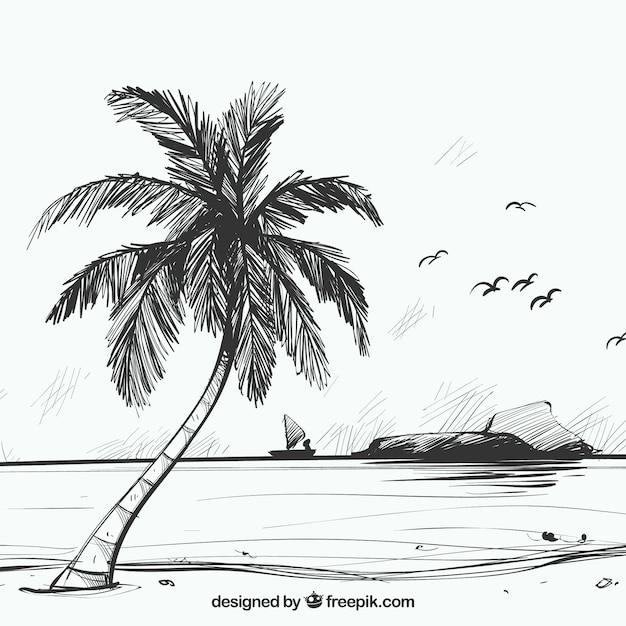 Beach sketch background with palm tree Free Vector