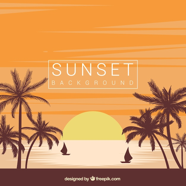 Beach sunset background with palm trees