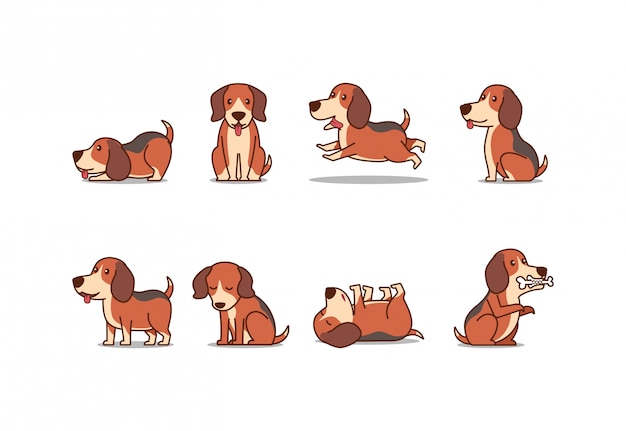 Милый щенок иллюстрации собаки beagle Premium векторы