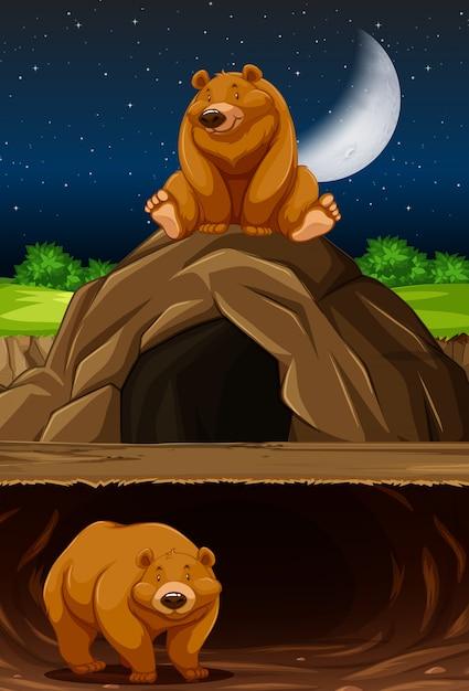Bear at the cave Free Vector