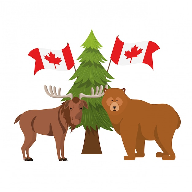 Bear and moose animal of canada Free Vector