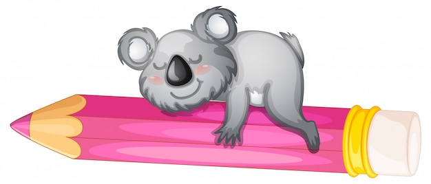 Bear sleeping on pencil Free Vector