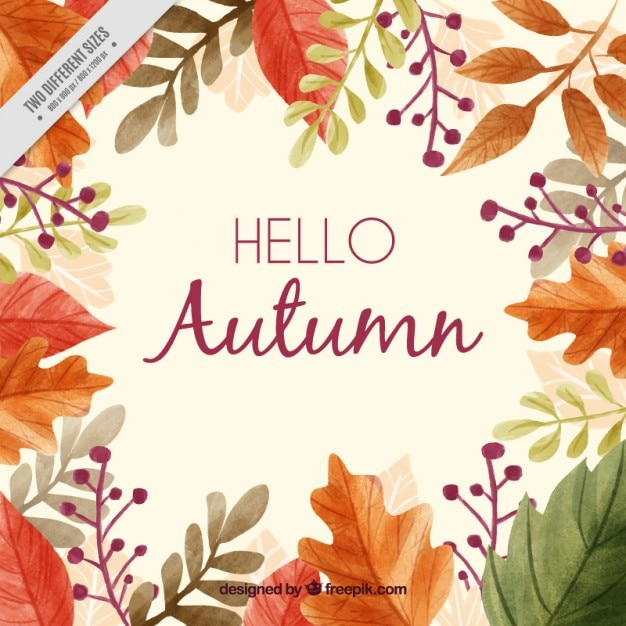 Beautiful autumn background with a frame of leaves Free Vector