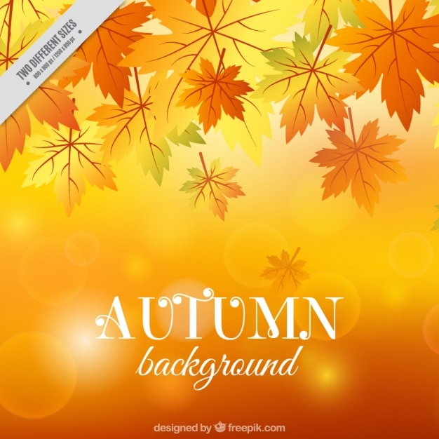 Beautiful autumn background with bokeh effect Free Vector
