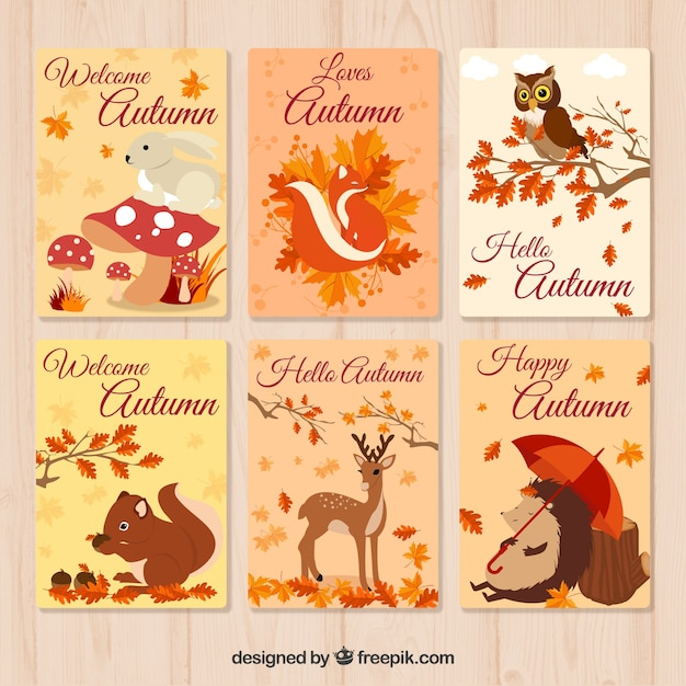 Beautiful autumn card collection Free Vector