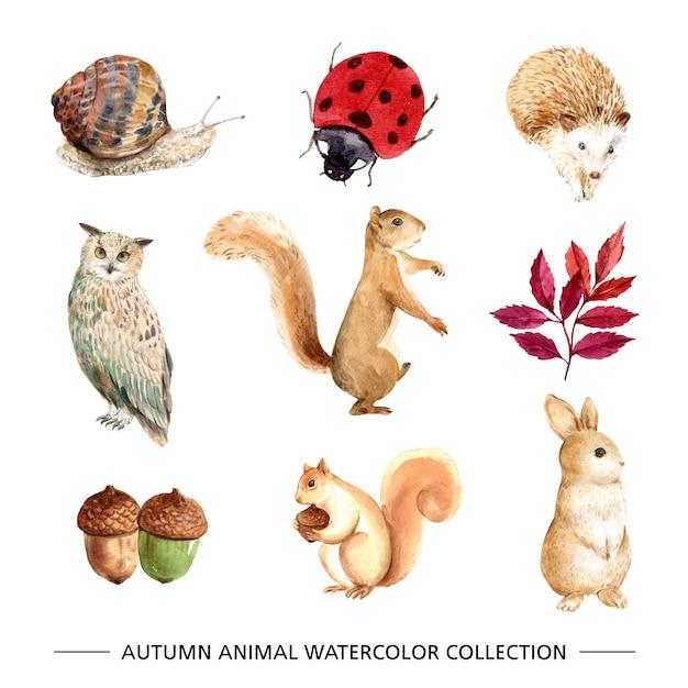 Красивая осень иллюстрация с акварелью для декоративного использования. Бесплатные векторы