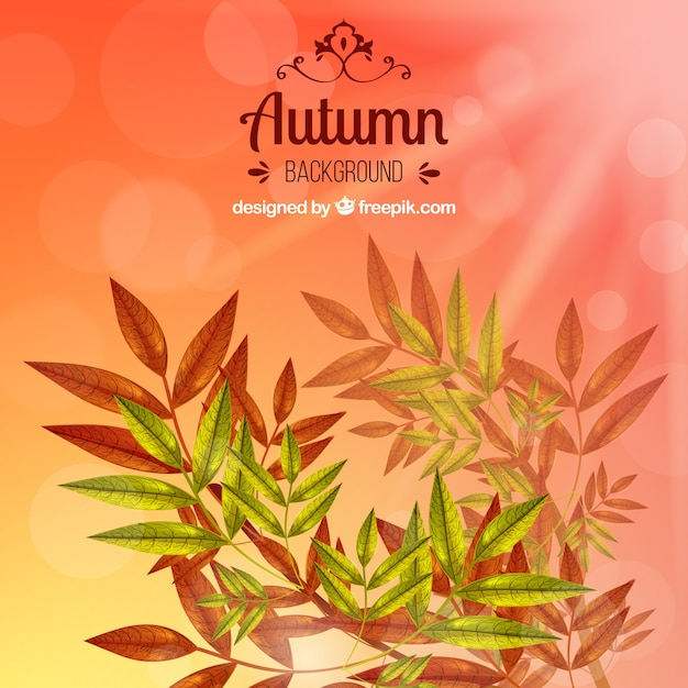 Beautiful autumnal background with leaves