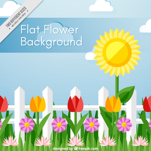 Beautiful background with decorative flowers in\ flat design