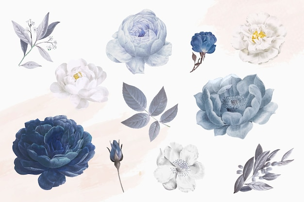 Beautiful blue rose objects Free Vector