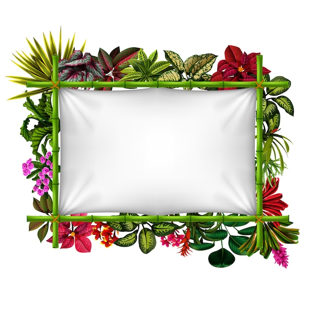 Beautiful botanical frame with the bamboo Premium Vector