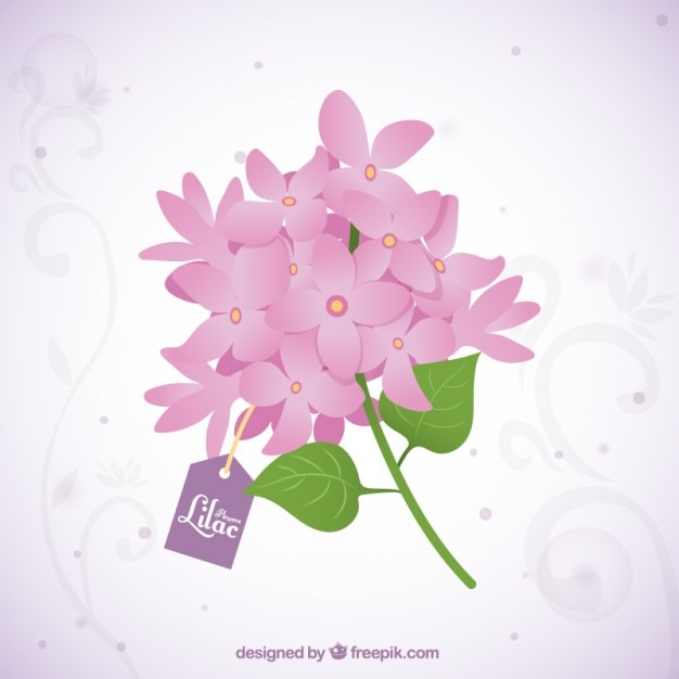 Beautiful bouquet of lilac flowers with a\ tag