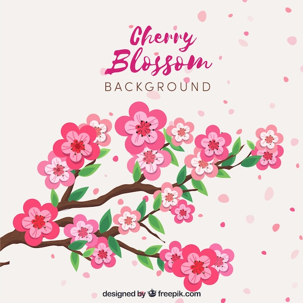 Beautiful cherry blossom background in flat design Free Vector