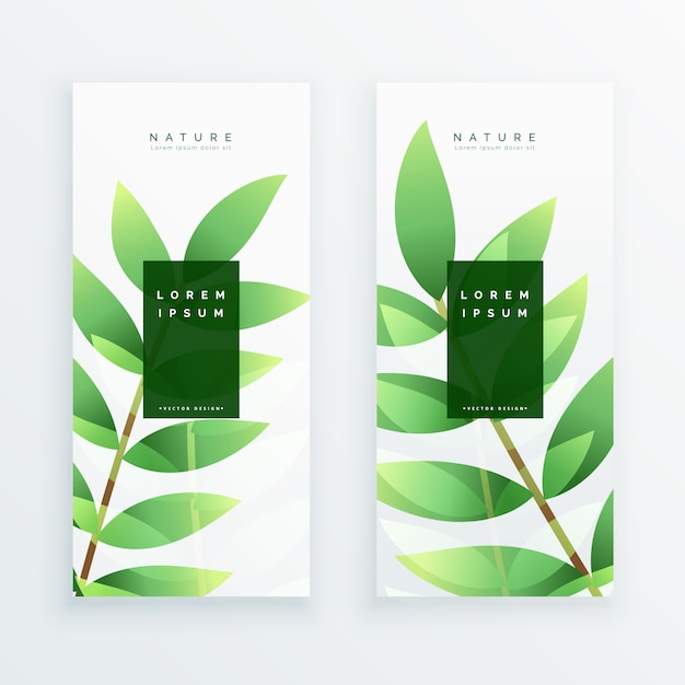Beautiful eco green leaves vertical banners Free Vector