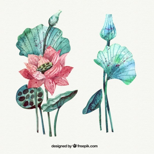 Beautiful exotic flower with leaves in\ watercolor effect