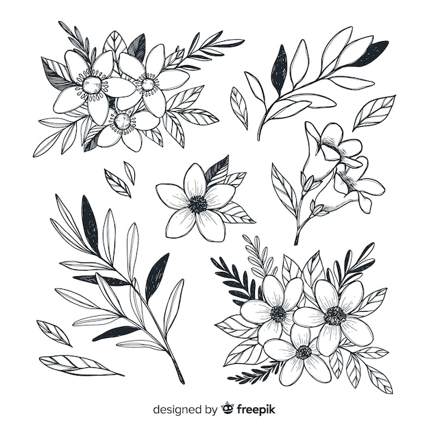 Beautiful flowers collection hand drawn style Free Vector