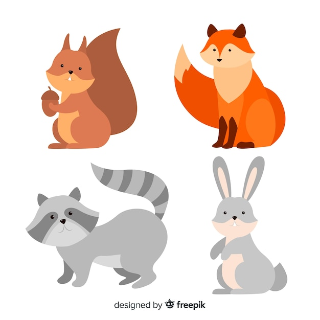 Beautiful forest animal collection Free Vector