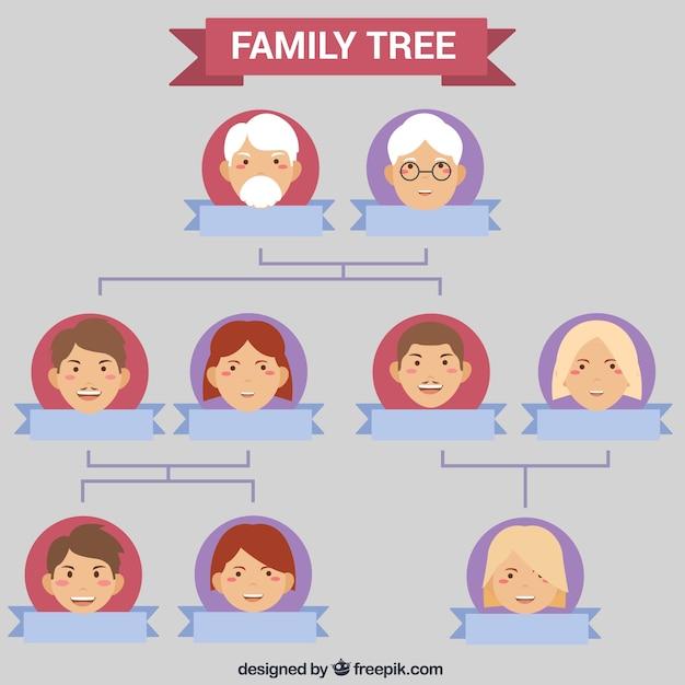 Beautiful Genealogical Tree Template Vector Free Download
